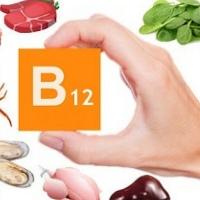 O poder dos nutrientes: vitamina B12